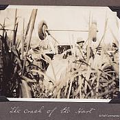 Hawker Hart Crash in a field