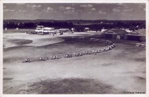 Begumpet1953